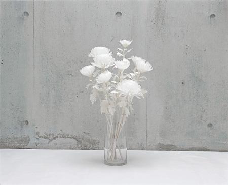 hidegreen006  福永恵美(ふくながめぐみ)